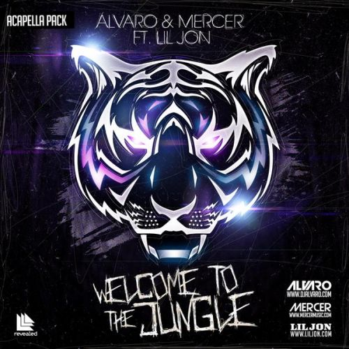Alvaro mercer ft lil jon welcome to the jungle for Classic house acapellas