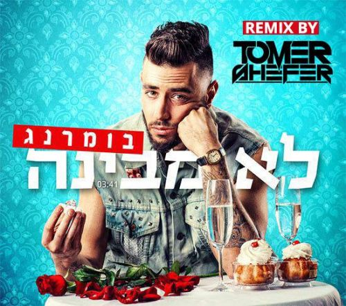 Tomer shefer official remix for Classic house acapellas