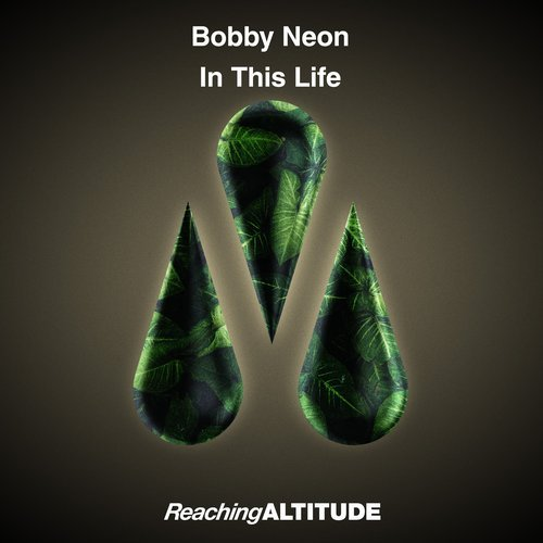 Bobby Neon - In This Life (Extended Mix) | Desire2Music Net